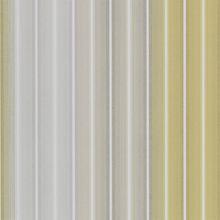 Jolie Stripe 15317