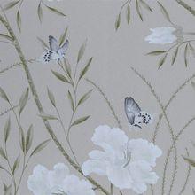 Papillon 75015